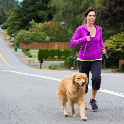 woman-in-purple-shirt-walking-her-dog-on-road