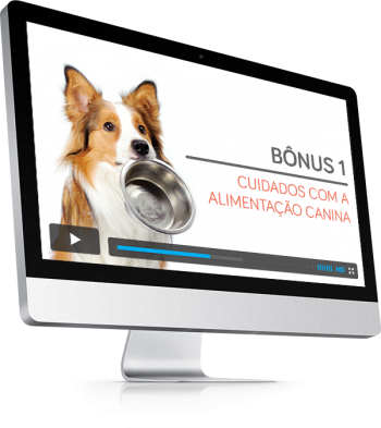 bonus-1-a