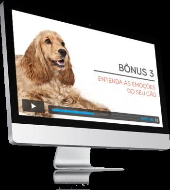bonus-3-a